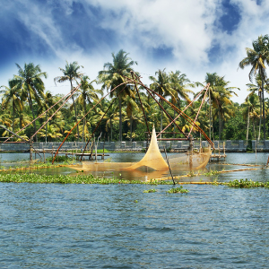 Chinese fishing nets on Lake Vembanad