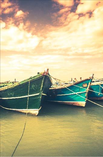 Highlights Of Sri Lanka with Jaffna
